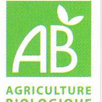 Logo bio pour les tisanes
